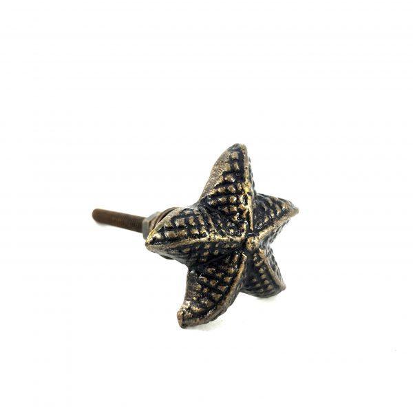 1 1 1 600x600 - Antique Gold Starfish Knob