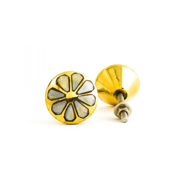 Brass and Shell Daisy Knob